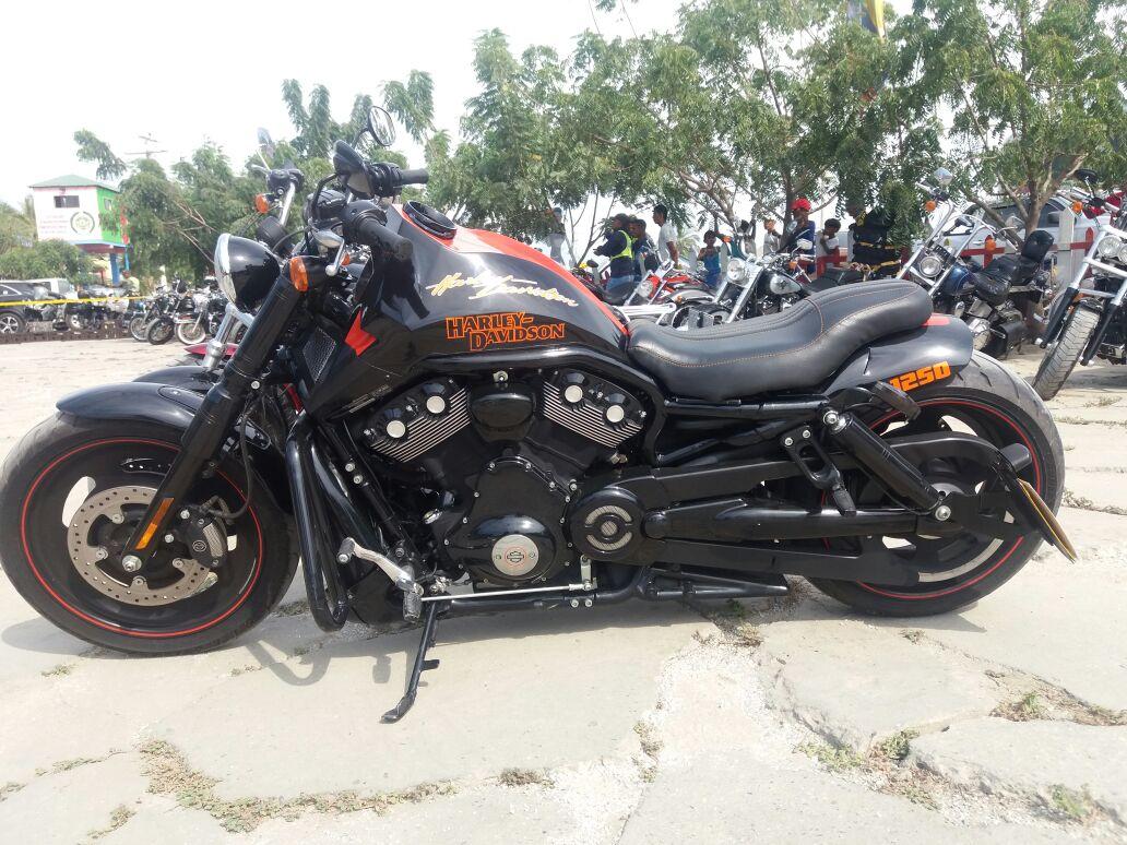 Cientos de motos Harley Davidson se pudieron apreciar en el evento.