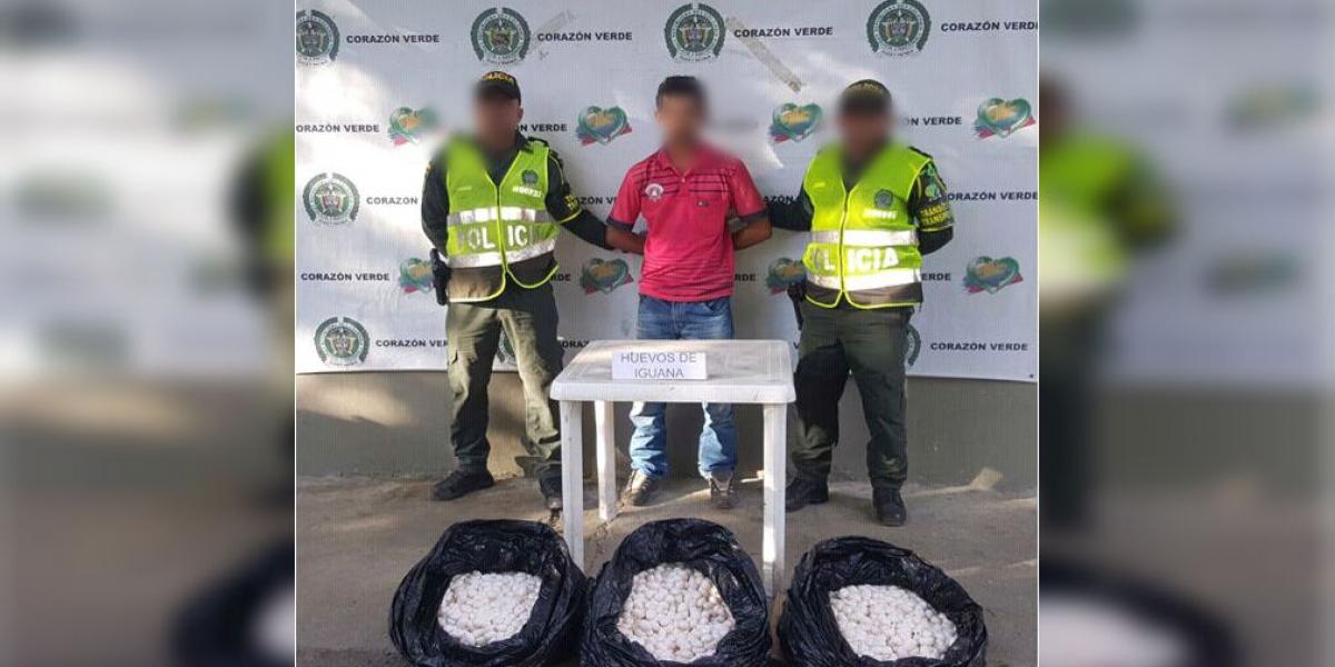 Sujeto capturado con 5 mil huevos de iguana.