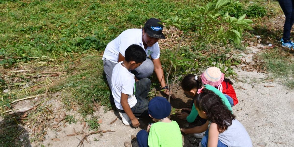 Dadsa Kids sembró árboles en la ronda hídrica de la quebrada Tamacá.
