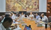 En la sesión, se analizó el proyecto de acuerdo para la adopción de la política de sostenibilidad en la institución.