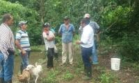 Campesinos que se unieron al proyecto de la Alcaldía.