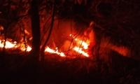 El incendio se registró en la tarde-noche del martes y fue controlado en la mañana de este miércoles.