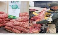 Durante la semana del 11 al 23 de abril, fueron inspeccionados un total de 279 vehículos que transportaban 4.165 bovinos, en los puestos de control articulados en las zonas de frontera de Norte de Santander, Arauca, La Guajira y Cesar.