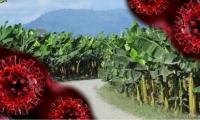 En Zona Bananera se reportó un fallecido, así como en otros municipios del Magdalena.