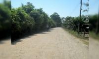 corregimiento de Orihueca, Zona Bananera.