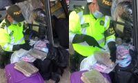 Policía incautó 17 kilos de marihuana.