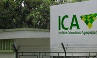El Instituto Colombiano Agropecuario ha recibido denuncias sobre la existencia de una presunta red criminal que está utilizando la imagen institucional para realizar ilícitos.