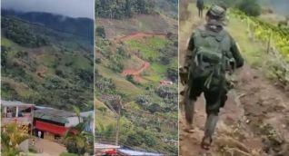 Combates en Argelia, Cauca.