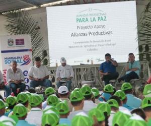 Alianzas productivas en el departamento de Magdalena.