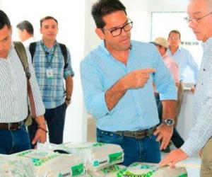la estrategia de exportación de arroz, hace parte del Programa de Integración Hacia delante de los Agricultores que promueve Fedearroz