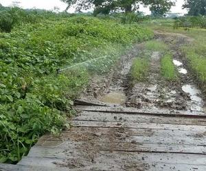 Estos distritos de riego servirán para impulsar el desarrollo agroindustrial del departamento.