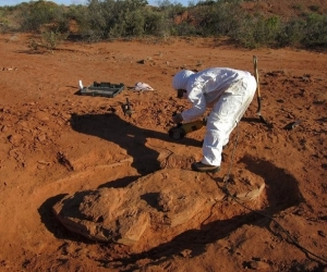 Lugar del descubrimiento de los restos del dinosaurio.