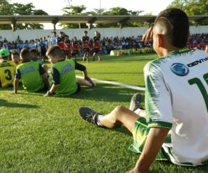 Los entrenadores y formadores deben conocer a fondo el protocolo a desarrollar.