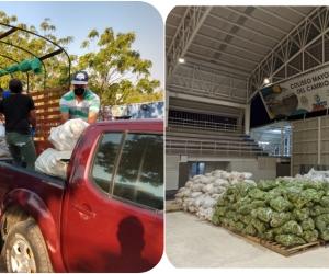 Las donaciones se realizaron por intermedio de Banco de Alimentos de la Pastoral Social de Santa Marta y el Banco de Alimentos de la Gobernación del Magdalena.