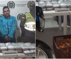 El hombre llevaba la droga escondida entre canastas de mandarina.