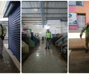 Proceso de fumigación en el Mercado Público de Santa Marta.