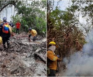 Avanzan labores para controlar incendio forestal en el Vía Parque Isla de Salamanca.