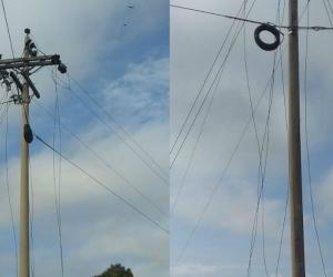 La empresa Electricaribe denunció un nuevo hurto de cables en el sector de Los Cocos.