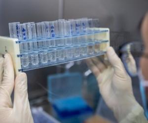Seguridad y eficacia, criterios esenciales para la escogencia de vacunas
