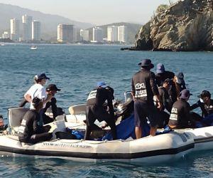 Liberación de los delfines.
