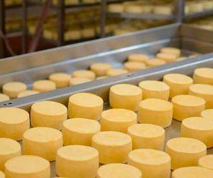 Las importaciones de productos lácteos realizadas por México ascienden a USD 1.660 millones en los últimos 3 años.
