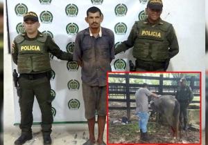 El hombre capturado fue entregado a las autoridades competentes para su judicialización.